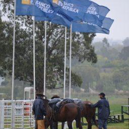 Fotos dia 1 - Expo Melilla 2016 (61)