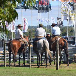 Fotos dia 2 - Expo Melilla 2016 (51)