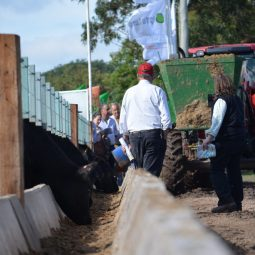 Fotos dia 2 - Expo Melilla 2016 (65)