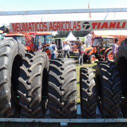 Fotos dia 2 - Expo Melilla 2016 (92)