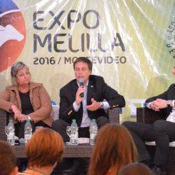 Fotos dia 3 - Expo Melilla 2016 (45)