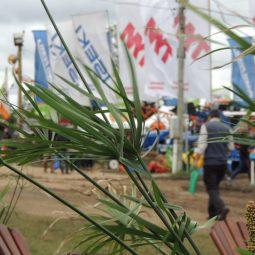 Fotos dia 4 - Expo Melilla 2016 (126)