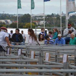 Fotos dia 4 - Expo Melilla 2016 (68)