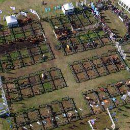 Expo Melilla 2017 - Dia 4 (129)