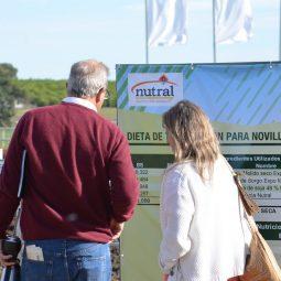 Expo Melilla 2017 - Dia 4 (5)