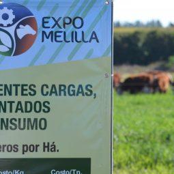 Expo Melilla 2017 - Dia 5 (3)