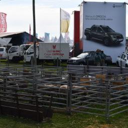 Día 1 - Expo Melilla 2018 (37)