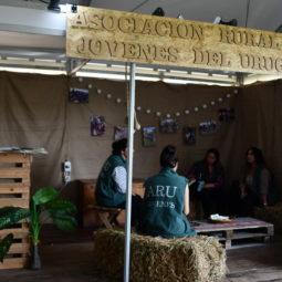 Día 1 - Expo Melilla 2018 (66)