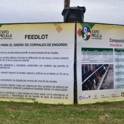 Día 2 - Expo Melilla 2018_027