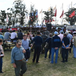 Día 4 - Expo Melilla 2018_150