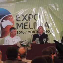 Fotos dia 3 - Expo Melilla 2016 (64)
