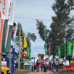 Fotos dia 4 - Expo Melilla 2016 (40)