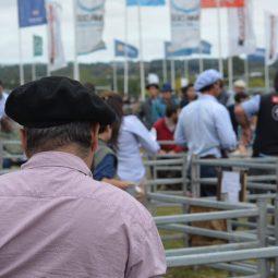 Fotos dia 4 - Expo Melilla 2016 (75)