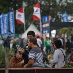 Fotos dia 4 - Expo Melilla 2016 (78)
