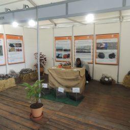 Expo Melilla 2017 - Día 1 (113)