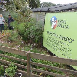 Expo Melilla 2017 - Día 1 (136)
