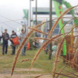Expo Melilla 2017 - Día 2 (82)