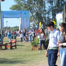 Expo Melilla 2017 - Dia 5 (49)