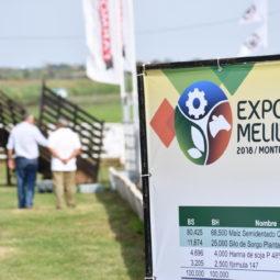 Día 1 - Expo Melilla 2018 (25)