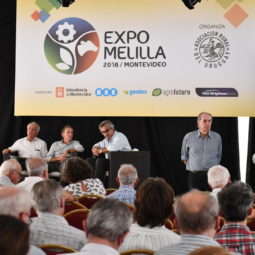 Día 1 - Expo Melilla 2018 (49)