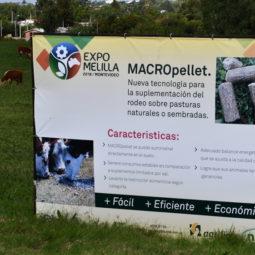 Día 2 - Expo Melilla 2018_094