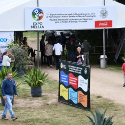 Día 3 - Expo Melilla 2018_083