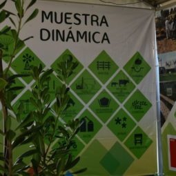 Día 4 - Expo Melilla 2018_035