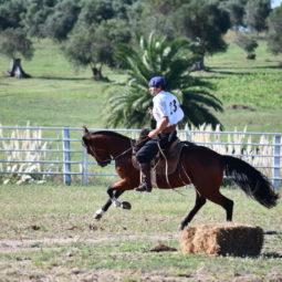Día 4 - Expo Melilla 2018_046