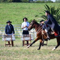 Día 4 - Expo Melilla 2018_051