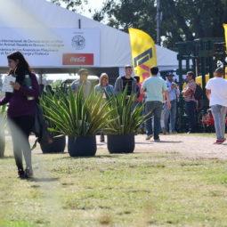Día 4 - Expo Melilla 2018_100