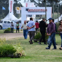 Día 4 - Expo Melilla 2018_141