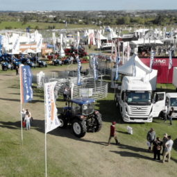 Día 5 - Expo Melilla 2018_18