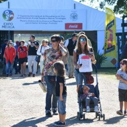 Día 5 - Expo Melilla 2018_29