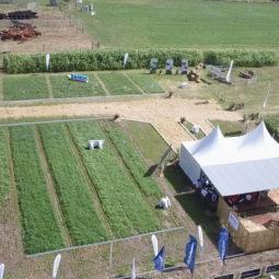 Expo Melilla 2019 - Día 1 (14)