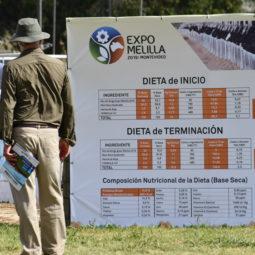 Expo Melilla 2019 - Día 1 (68)