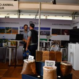 Expo Melilla 2019 - Día 2 (101)