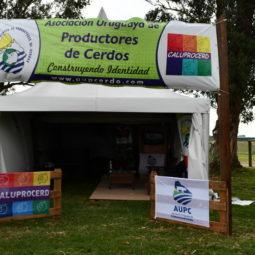 Expo Melilla 2019 - Día 2 (121)