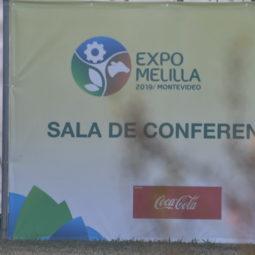 Expo Melilla 2019 - Día 2 (27)