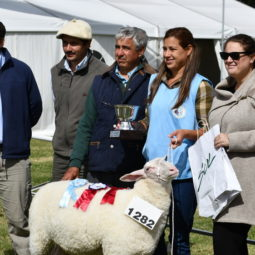 Expo Melilla 2019 - Día 3 (115)
