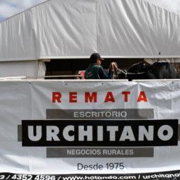 Expo Melilla 2019 - Día 3 (155)