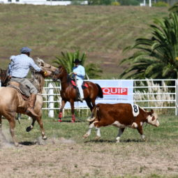 Expo Melilla 2019 - Día 4 (181)
